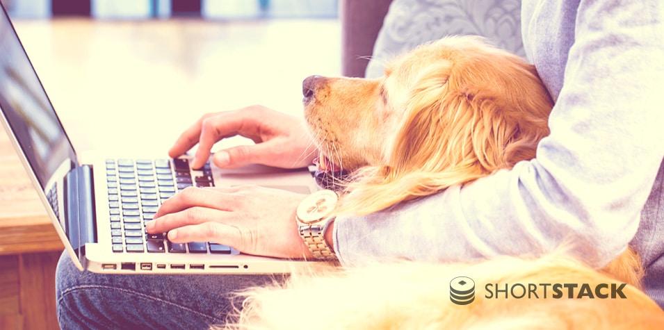 Raising Brand Awareness with a Dog Photo Contest